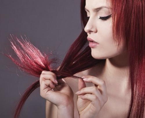 doppie punte,rimedi naturali,olio per capelli,capelli secchi